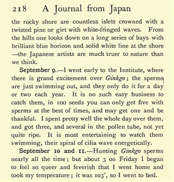 図2:A Journal from Japan:1908/09/09