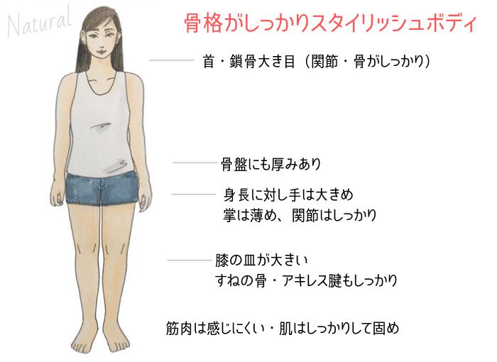 骨格ナチュラル特徴