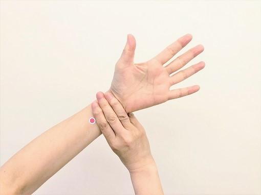 内関(ないかん) めまいや自律神経を整えるのに有効なツボ