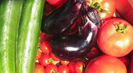 身体に嬉しい夏の野菜果物
