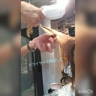 アッシュ インナーカラー 切りっぱなしボブ グラデーションカラー ヘアスタイルや髪型の写真・画像