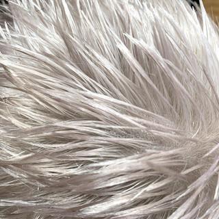 ハイトーンカラー アッシュベージュ ストリート ショート ヘアスタイルや髪型の写真・画像