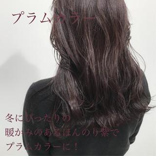 冬カラー セミロング 暗髪 ナチュラルブラウンカラー ヘアスタイルや髪型の写真・画像