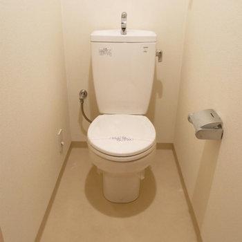 トイレ、少し広め※写真は別部屋