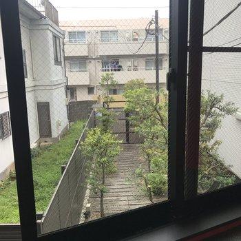 この窓から入り口が見えます。
