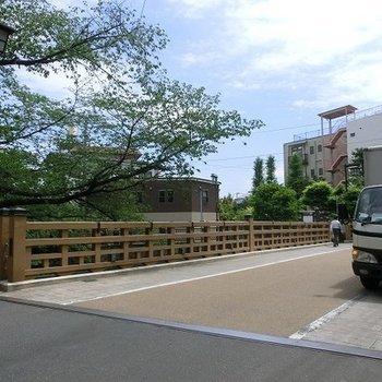 こんな橋も近くにあります。