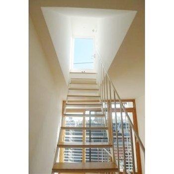 屋上への階段までしっかりデザイン※写真は別部屋です