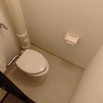 トイレは古いタイプ。