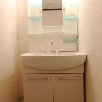 独立洗面台もしっかり完備。
