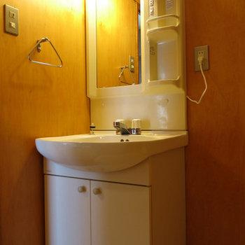 トイレ+洗面台こんな感じ!※写真は別部屋