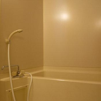 お風呂は普通かな※写真は別部屋
