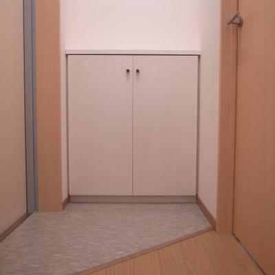 玄関も広めでシューズボックスももちろんあり!