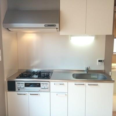 キッチンは少し小さいですが