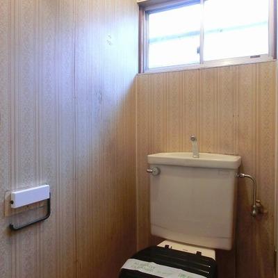 トイレも綺麗ですよ。