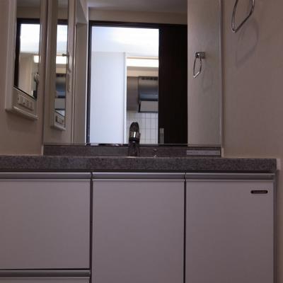 独立洗面台も大きくてうれしい※写真は別部屋です。