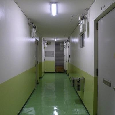 共用部の廊下です。