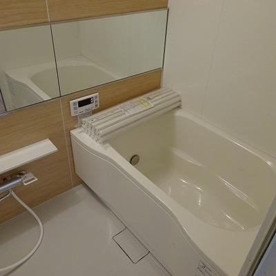 お風呂も分譲仕様の大きなタイプ