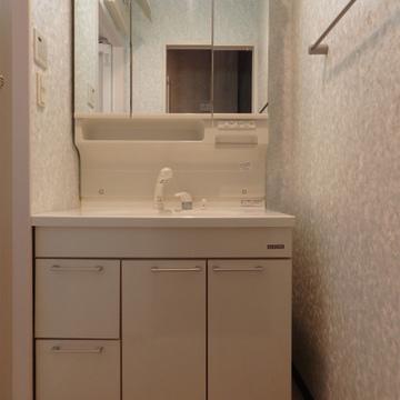 大きな洗面台で朝の忙しい時間も快適に。