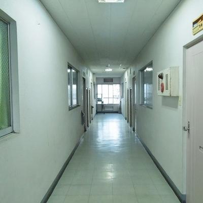 廊下に向けて和室の窓が付いています