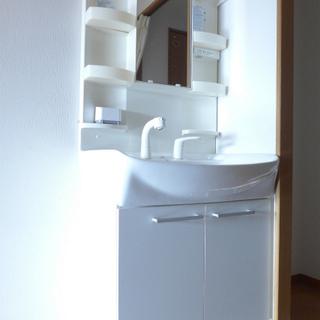 洗面台はよくあるタイプ。使い勝手はgood!