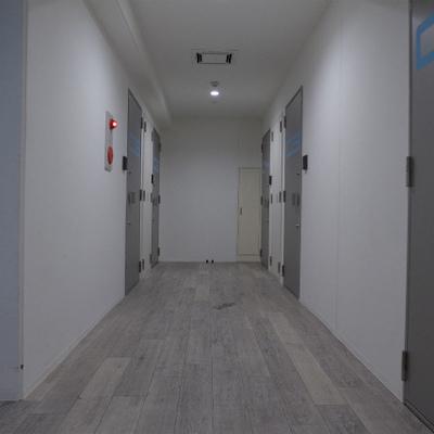 共用部の廊下、面白い!