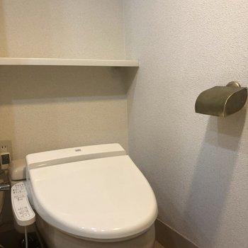 洗面台の前にあるトイレ。金のペーパーホルダーがアクセント!