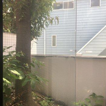 居室にある、大きな窓からは、目の前の通りが見えます
