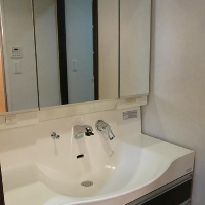 ホースの洗面台※写真は別部屋