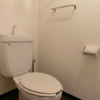 造り棚付きトイレです