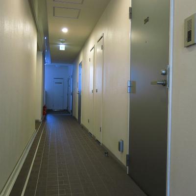 共有廊下はこんな感じ