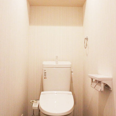 お部屋もトイレも1部はシックに