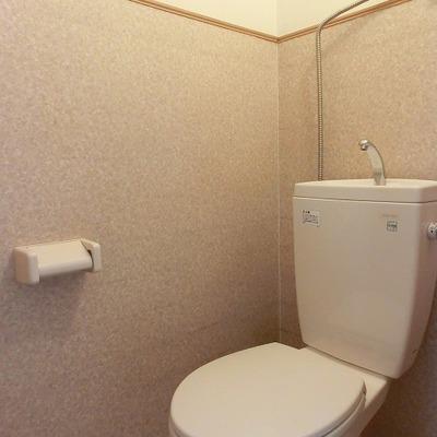 清潔なおトイレです。