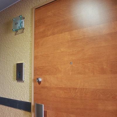 ドアの木と取っ手部分がかっこいい