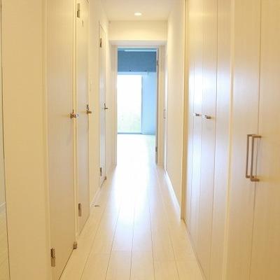 廊下には扉がいっぱい!