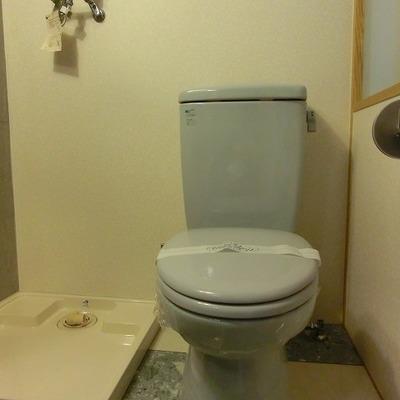 脱衣所にトイレが入っている間取りです