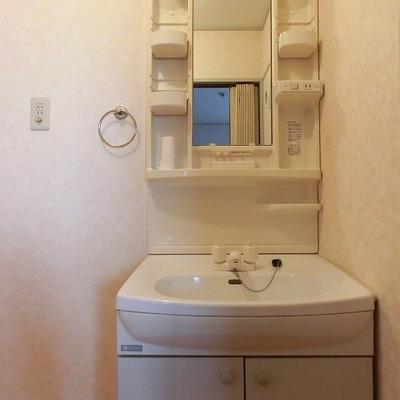 洗面台の隣に洗濯機置き場があります