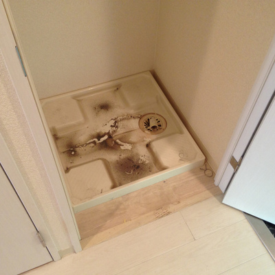 洗濯パン。扉を閉めて隠して置けます。
