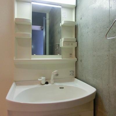 シャワーノズル付きの大きめの洗面台の隣は洗濯機置き場