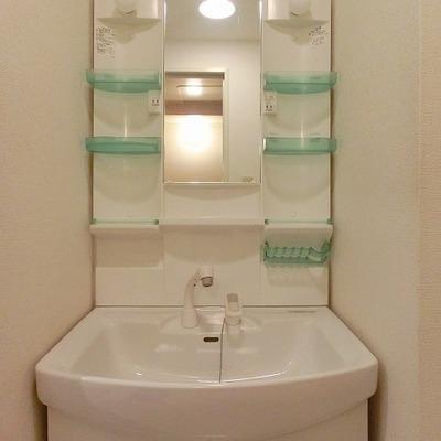 シャワーノズルの付きのキレイな洗面台※写真別部屋