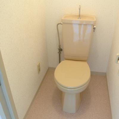何か色がらモノを置きたいそんなトイレ空間