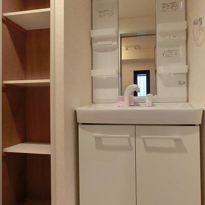 シャワーノズル付きの洗面台、隣には戸棚があって◎