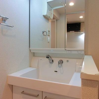 流し場が深めのシャワーノズル付きの洗面台