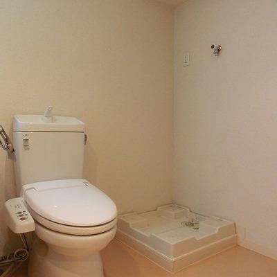 ウォシュレット付きのおトイレと洗濯パン ※写真は別部屋