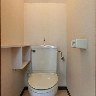階段下を利用したキレイめのおトイレ