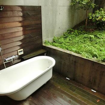 緑を感じながら、湯に浸かりたい。