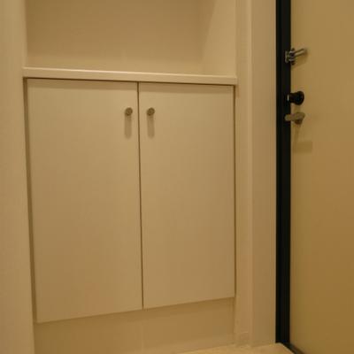 玄関もしっかり。フラット設計。