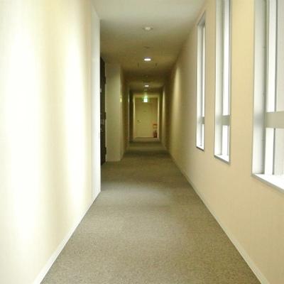 共用部分も新しくキレイ。居住スペースはこの5階だけなんです!