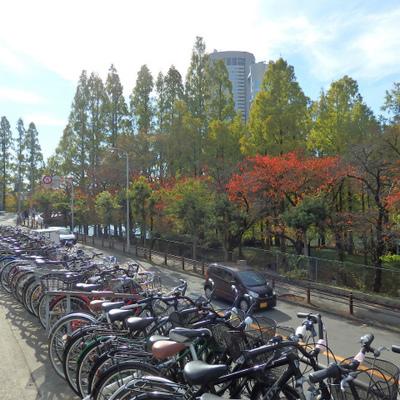 桜ノ宮の雰囲気って好き。なにもないけど。