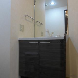 洗面台も広めで、鏡も大きい!清潔感ばっちりです!