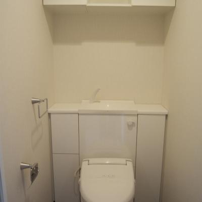 作りこまれたトイレ※写真は別部屋です。